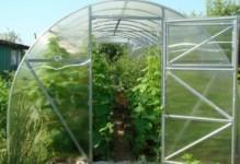 Теплица Урожай ПК 10 метров