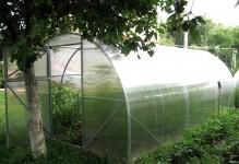 Теплица Урожай ЦЕЛЬНАЯ 10х3 метров из поликарбоната